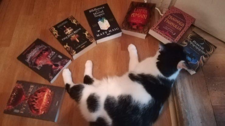 pisica carti editura nemira